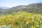 Othos | Eiland Karpathos | De Griekse Gids foto 001
