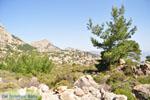 Natuur in het oosten van Karpathos | De Griekse Gids 004