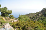 Natuur in het oosten van Karpathos | De Griekse Gids 005