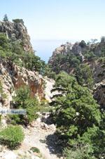 Natuur in het oosten van Karpathos | De Griekse Gids foto 011